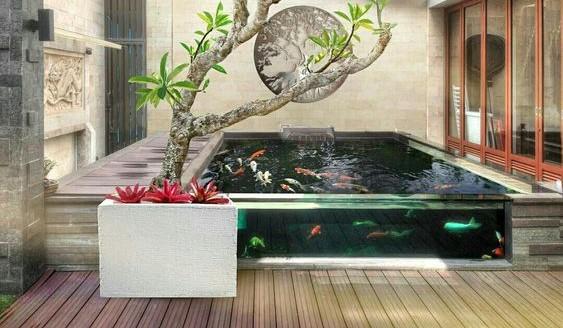 Desain Kolam Koi dalam Rumah 4