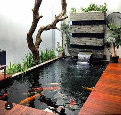 Desain Kolam Koi dalam Rumah 5